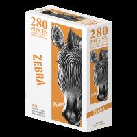 斑馬-Zebra